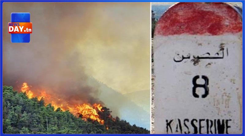 القصرين: حرائق تأتي على حوالي 70 هكتارا بمحيط حقل الدولاب