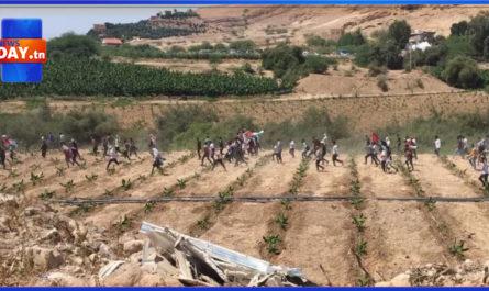 الشعب الاردني يدخل المناطق المحتلة