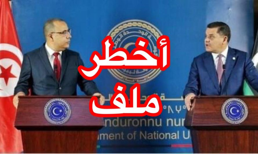 """سمير الوافي يتحدّث عن """"أخطر"""" ملف فتحه رئيس الحكومة الليبي مع المشيشي"""