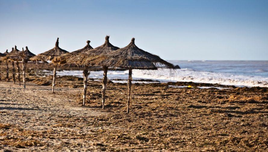 تونس/ السباحة ممنوعة في 17 شاطئ  بالأسماء