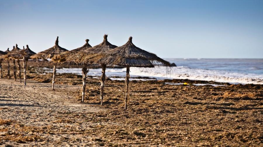 شواطئ تونس